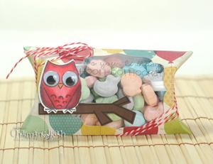 charmaineIkachTE-Owl-Pillow-Boxfront