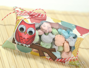 charmaineikachTE-Owl-Pillow-Box-closeupside