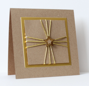 Lucy gold star with kraft paper