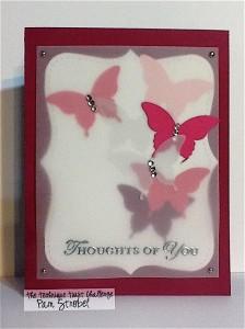 Pam Strobel Butterfly Bokeh